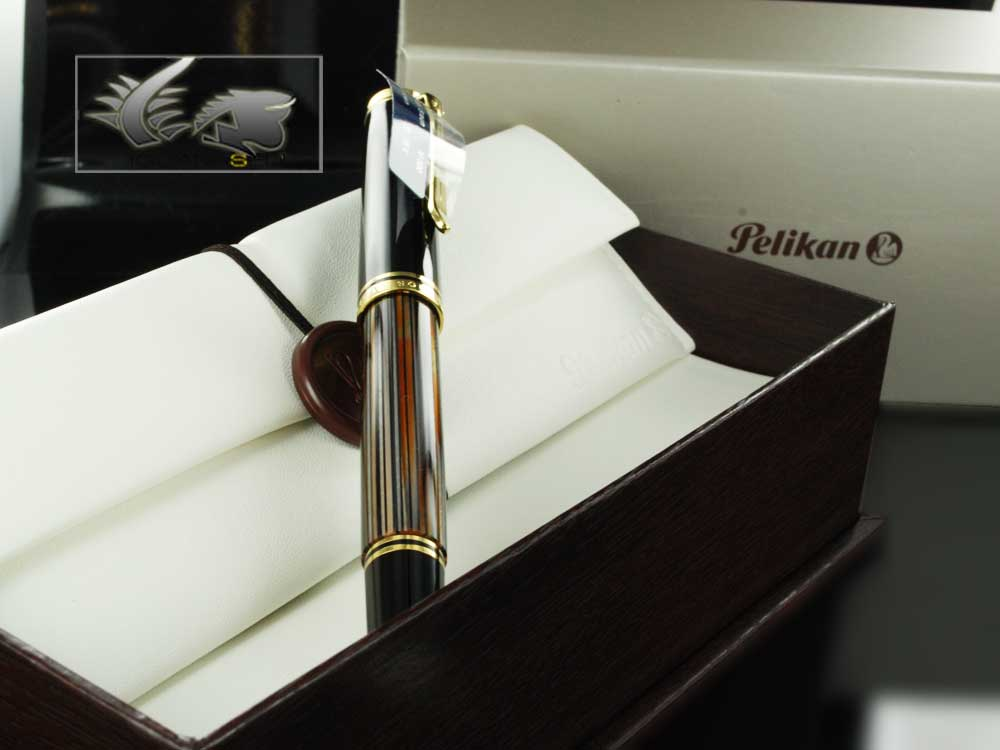 Pelikan Fountain Pen Souverän M800 Brown Tortoise Shell - Special ed.