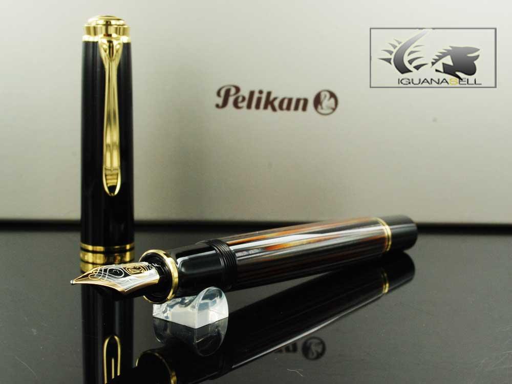Pelikan-Fountain-Pen-Souveran-M800-Brown-Tortoise-Shell-Special-ed.-915702-2